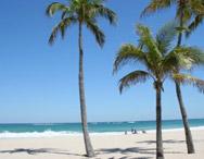 Oferta de Último Minuto a Punta Cana