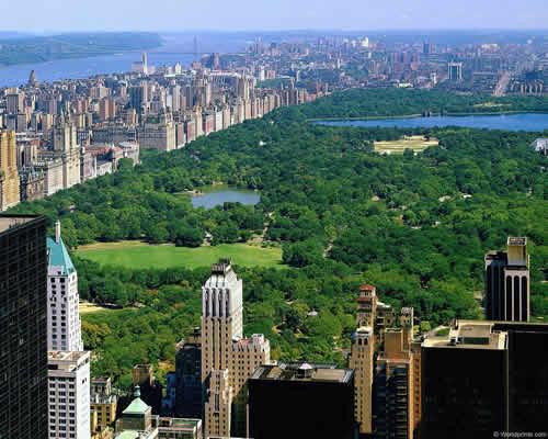 Ofertas puente de dicimbre en Nueva York