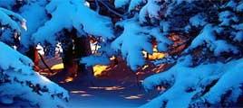 Oferta Escapadas Especiales en la Nieve